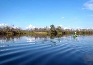 Crosswicks Creek Kayaking