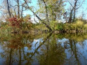 Crosswicks Creek