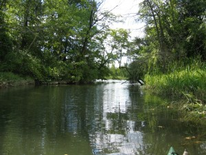 Thorntown Creek Mouth